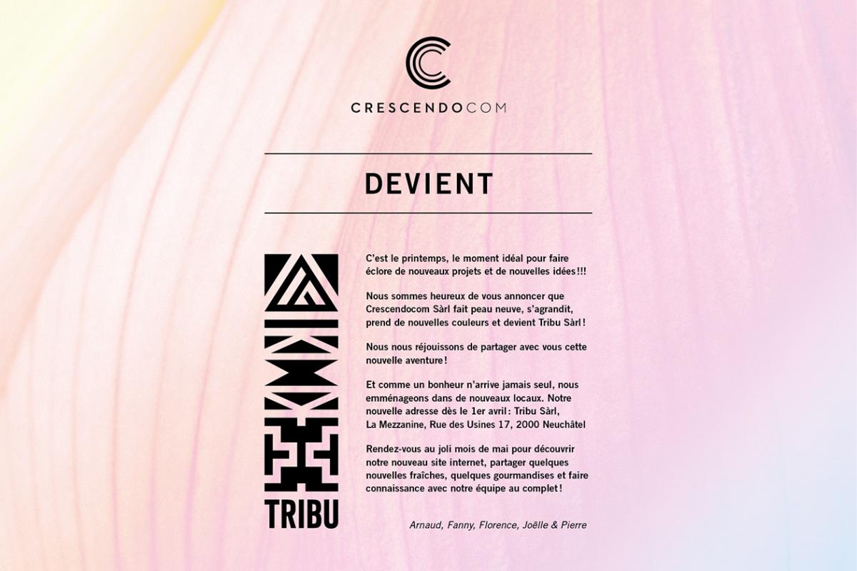Crescendocom devient Tribu Sàrl